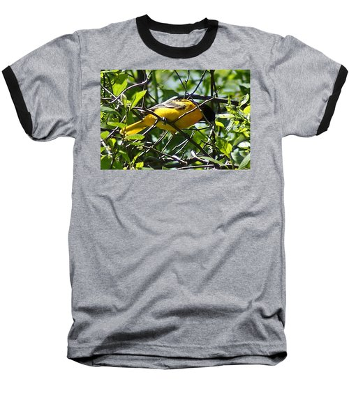 Baltimore Oriole Baseball T-Shirt by Joe Faherty