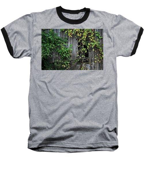 Barn Window Vine Baseball T-Shirt