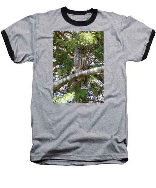Baseball T-Shirt featuring the photograph Barred Owl  by Francine Frank