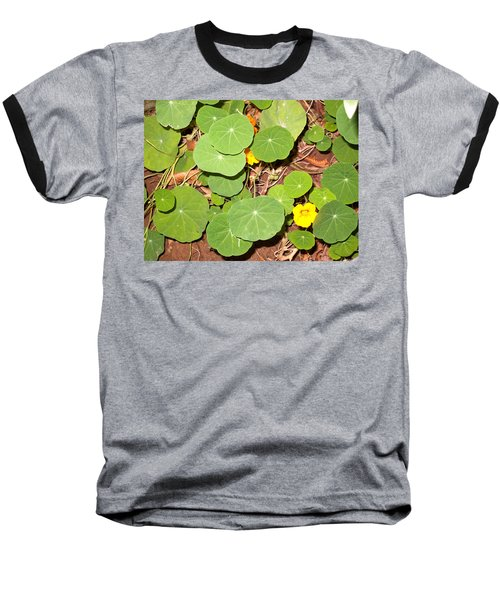 Beautiful Round Green Leaves Of A Plant With Orange Flowers Baseball T-Shirt