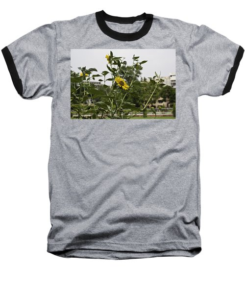 Baseball T-Shirt featuring the photograph Beautiful Yellow Flower In A Garden by Ashish Agarwal