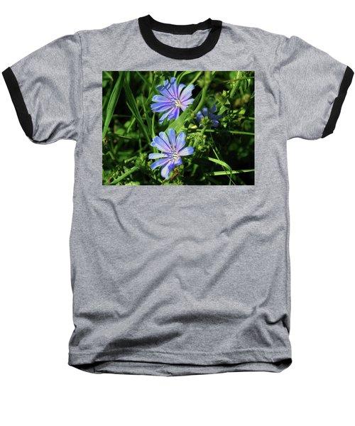 Beauty Of The Field Baseball T-Shirt