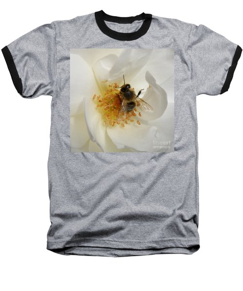 Baseball T-Shirt featuring the photograph Bee In A White Rose by Lainie Wrightson