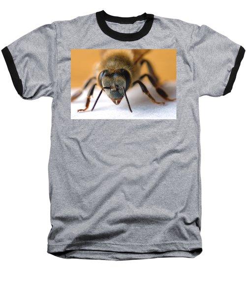 Bee In Macro 4 Baseball T-Shirt by Micah May
