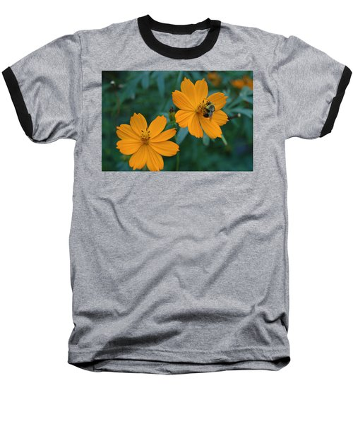 Baseball T-Shirt featuring the photograph Bee On Cosmos Flower  by Tom Wurl