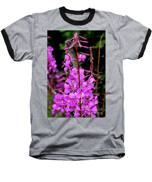Baseball T-Shirt featuring the photograph Bee On Fireweed In Alaska by Kathy  White
