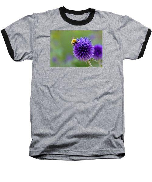 Bee On Garden Flower Baseball T-Shirt