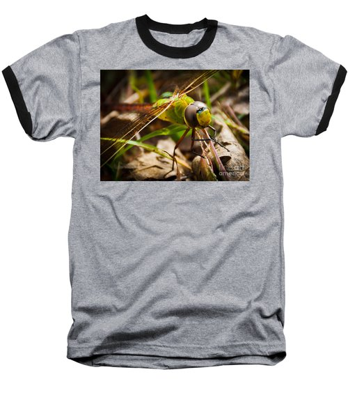 Baseball T-Shirt featuring the photograph Big Brown Eyes by Cheryl Baxter