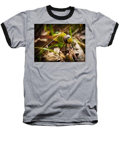 Big Brown Eyes Baseball T-Shirt by Cheryl Baxter