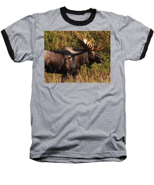 Baseball T-Shirt featuring the photograph Big Bull by Doug Lloyd