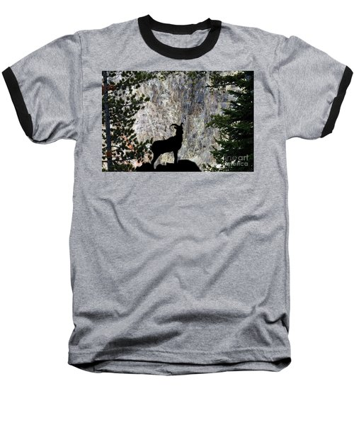 Baseball T-Shirt featuring the photograph Big Horn Sheep Silhouette by Dan Friend