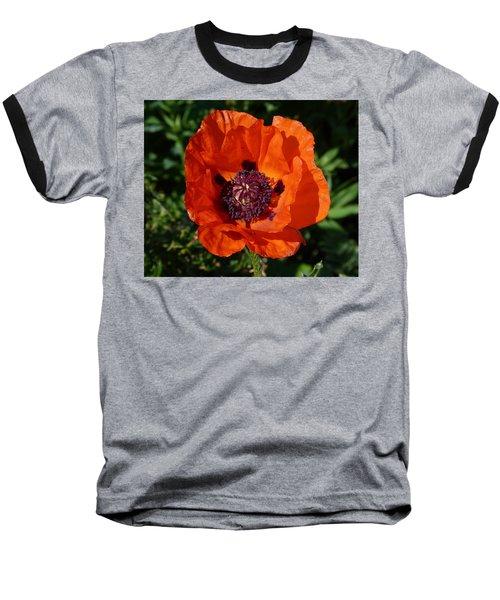 Baseball T-Shirt featuring the photograph Big Red Poppy by Lynn Bolt