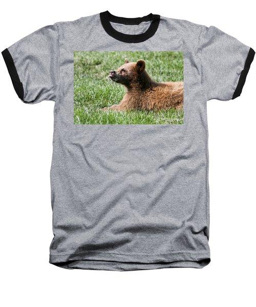 Black Bear Cub I Baseball T-Shirt