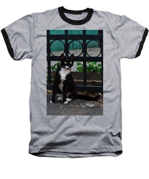 Black Cat On Black Background Baseball T-Shirt