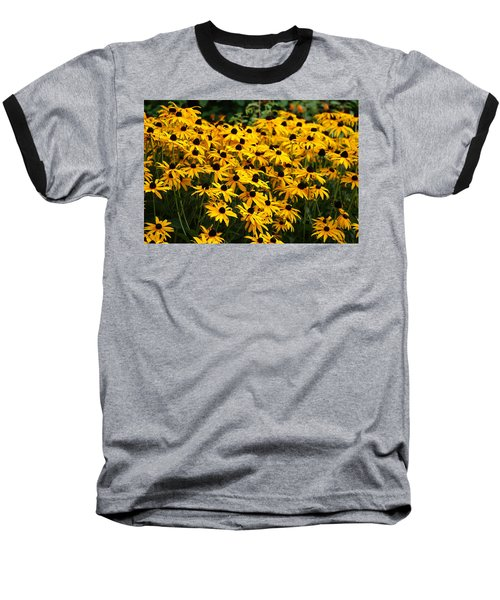 Blackeyed Susan Baseball T-Shirt by Joe Faherty