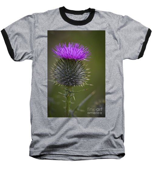Blooming Thistle Baseball T-Shirt by Clare Bambers