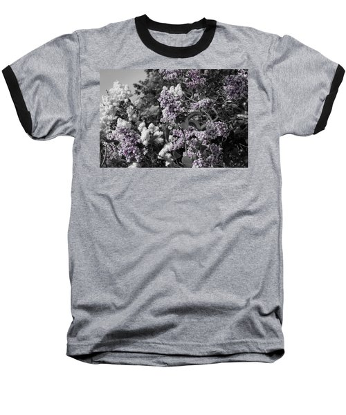 Blooms Baseball T-Shirt by Colleen Coccia