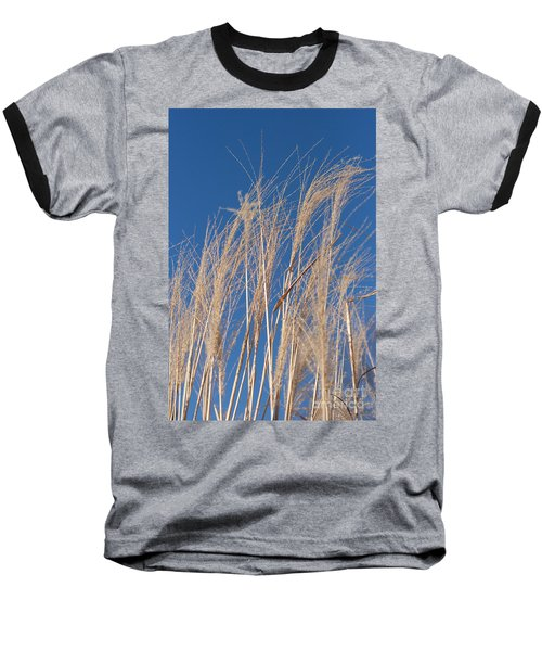Baseball T-Shirt featuring the photograph Blowing In The Wind by Barbara McMahon