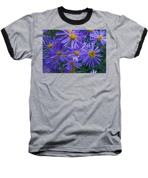 Blue Asters Baseball T-Shirt