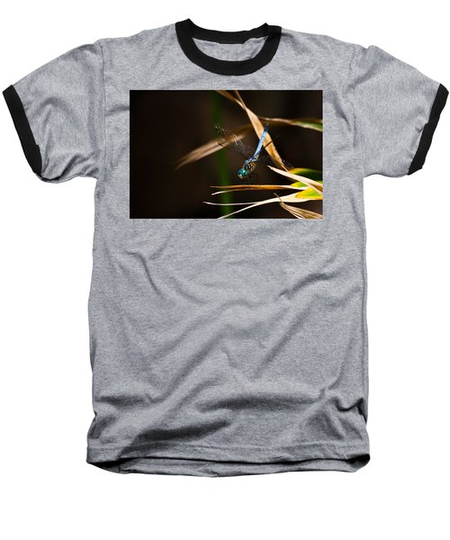 Blue Dasher Dragonfly Baseball T-Shirt