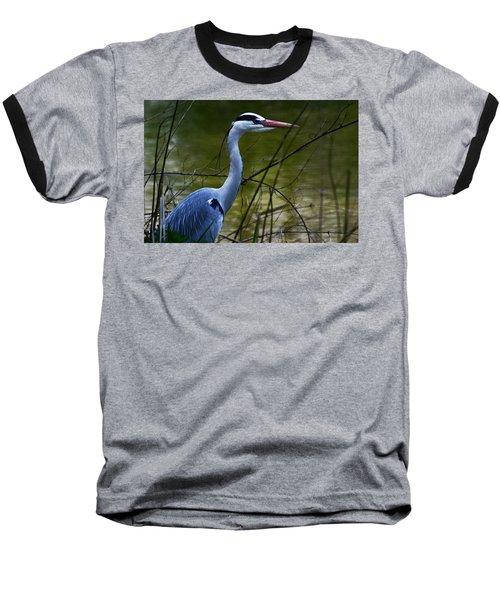 Blue Heron Vondelpark Amsterdam Baseball T-Shirt