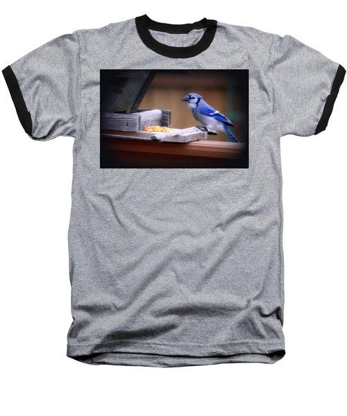 Baseball T-Shirt featuring the photograph Blue Jay On Backyard Feeder by Kay Novy