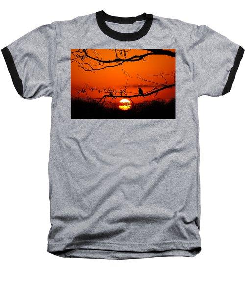 Bluebird Dawn Baseball T-Shirt