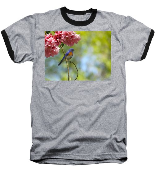 Bluebird In Cherry Tree Baseball T-Shirt
