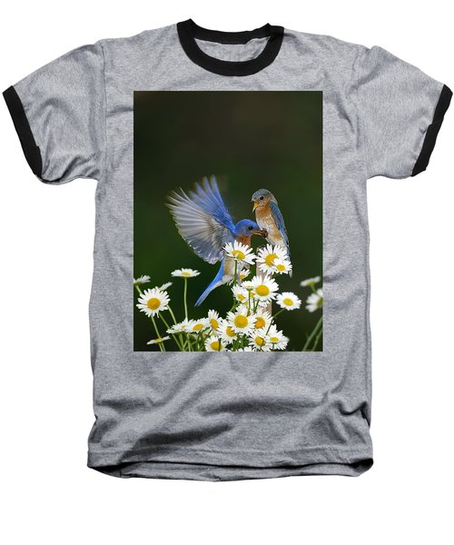 Baseball T-Shirt featuring the photograph Bluebirds Picnicking In The Daisies by Randall Branham