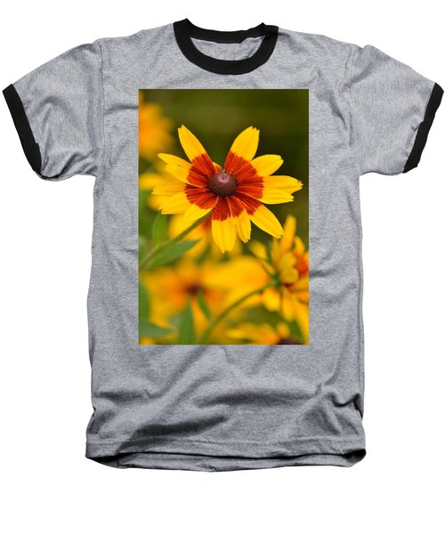 Baseball T-Shirt featuring the photograph Blush-eyed Susan by JD Grimes