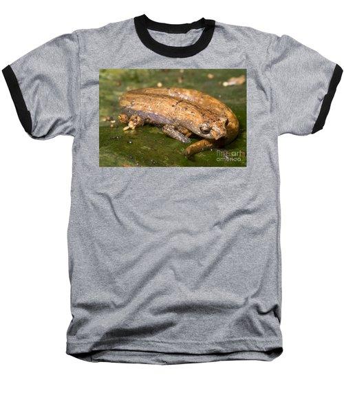Bolitoglossine Salamander Baseball T-Shirt by Dante Fenolio