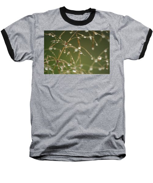 Branches Of Dew Baseball T-Shirt