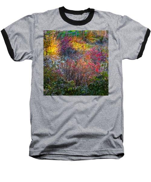 Bright Autumn Light Baseball T-Shirt