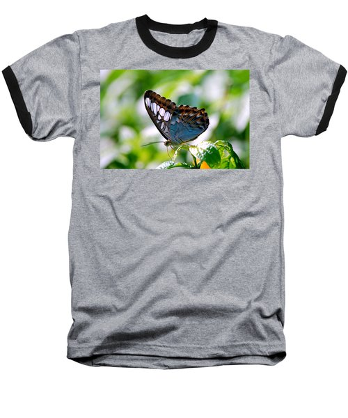 Baseball T-Shirt featuring the photograph Bright Blue Butterfly by Peggy Franz