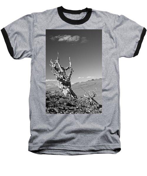 Bristlecone Pine And Cloud Baseball T-Shirt