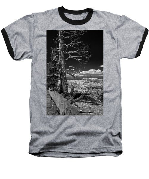 Bryce Canyon - Dead Tree Black And White Baseball T-Shirt