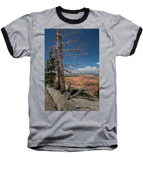 Bryce Canyon - Dead Tree Baseball T-Shirt by Larry Carr