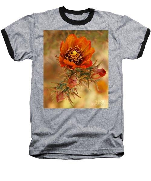 Buckhorn Cholla 2 Baseball T-Shirt