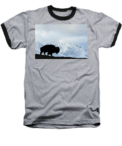Baseball T-Shirt featuring the photograph Buffalo Suvived Another Yellowstone Winter by Dan Friend