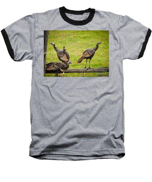 Bunch Of Turkeys Baseball T-Shirt by Cheryl Baxter