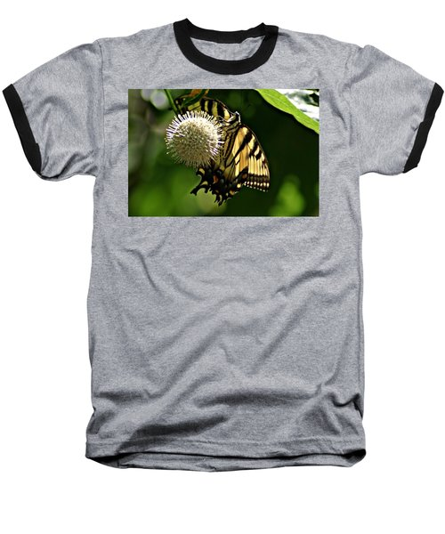 Butterfly 2 Baseball T-Shirt by Joe Faherty