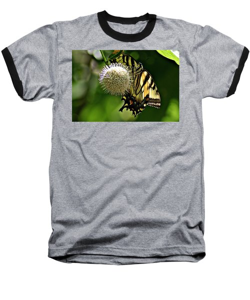 Butterfly 3 Baseball T-Shirt by Joe Faherty