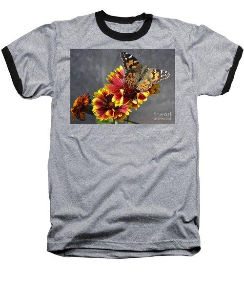 Baseball T-Shirt featuring the photograph Butterfly On A Gaillardia by Verana Stark