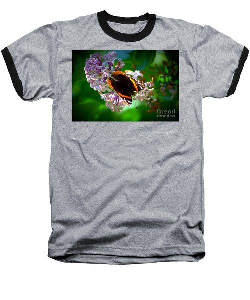 Butterfly On Lilac Baseball T-Shirt by Kevin Fortier