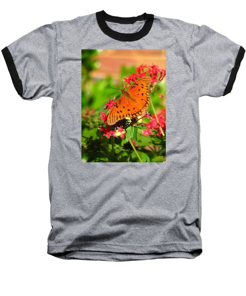 Butterfly On Pentas Baseball T-Shirt by Carla Parris