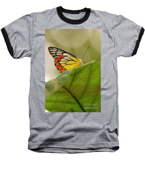 Baseball T-Shirt featuring the photograph Butterfly Resting by Fotosas Photography