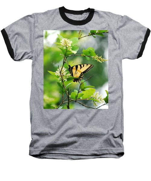 Baseball T-Shirt featuring the photograph Butterfly Tiger Swallow by Peggy Franz
