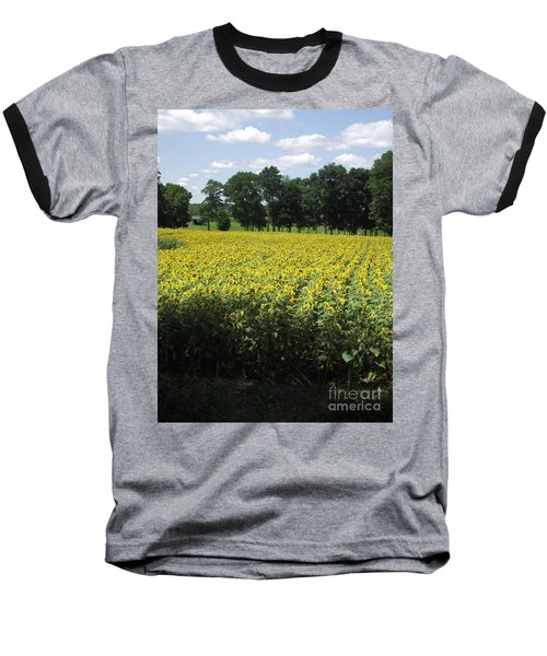Buttonwood Farm Baseball T-Shirt