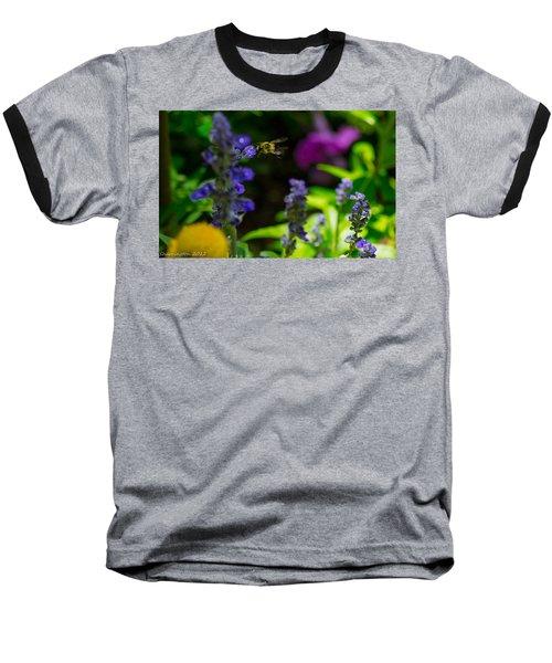 Buzzing Around Baseball T-Shirt by Shannon Harrington