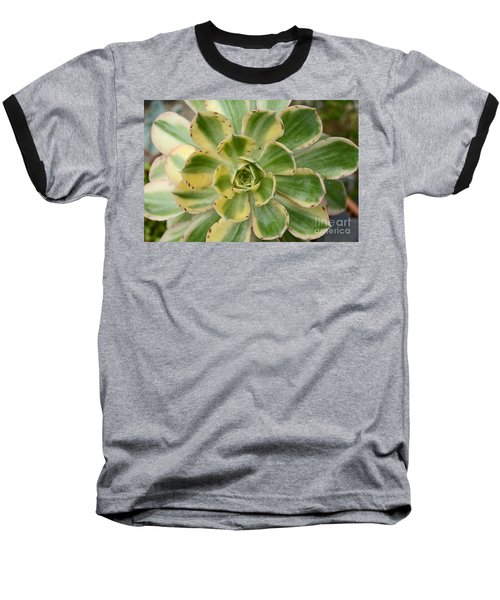 Cactus 63 Baseball T-Shirt